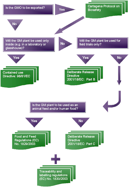 Genewatch Uk Guide To Eu Regulations This Flow Chart Is